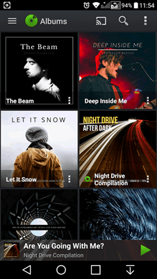 PlayerPro Music Player albums